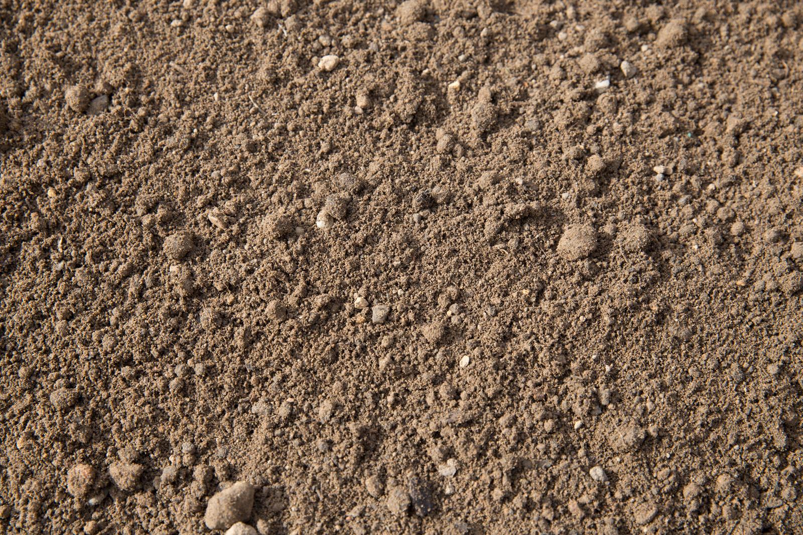 gesiebter Mutterboden